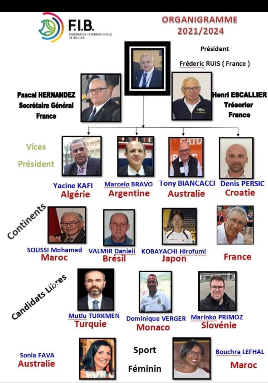Organisation chart FIB